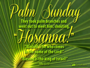 This Palm Sunday card celebrates the beginning of holy week and Jesus' triumphal entry into Jerusalem. With the bible quote John 12:13 this greeting card from LLerrah Ecards commemorates Palm Sunday.